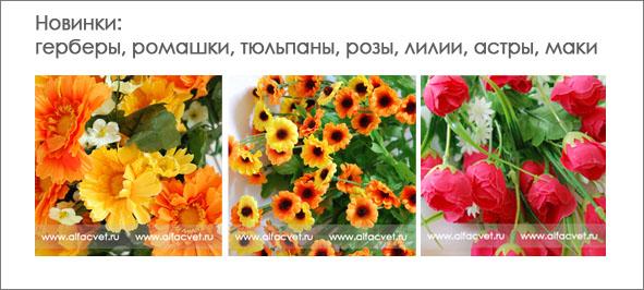 Ростов-на-дону цветы опт
